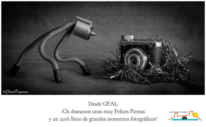 Felicitación GFAL 2015 web